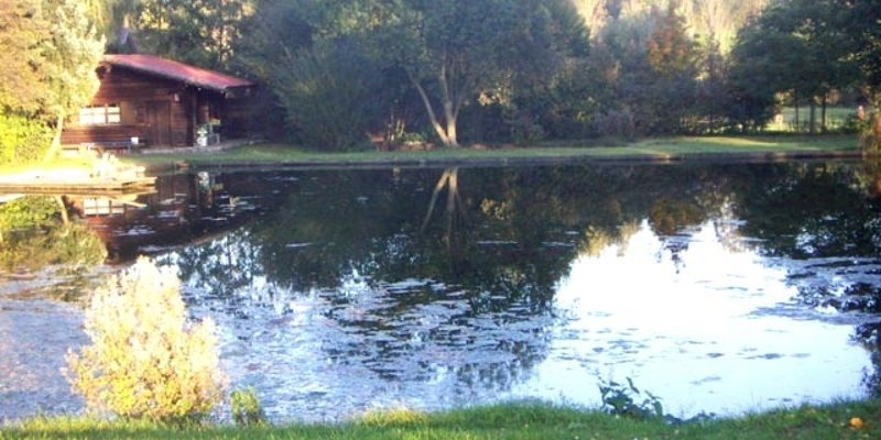 Pond site with log cabin
