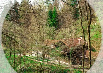 Seminarhaus mitten im Wald für 25 Personen